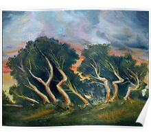 Cyprus trees oil painting Poster