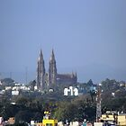 St. Philomena's Church towers by bharath