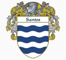 Santos Coat of Arms/Family Crest by William Martin