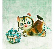 Kitty Mischief Photographic Print