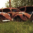 Automobile Graveyard No 3 by Barry W  King