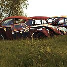 Automobile Graveyard No 7 by Barry W  King
