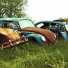 Automobile Graveyard No 9 by Barry W  King