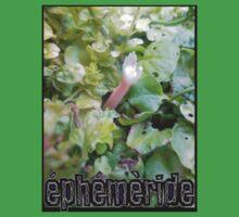 EPHEMERIDE #1  by edend