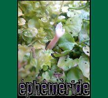 EPHEMERIDE #1  Unisex T-Shirt
