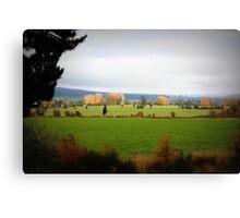 Farmlands From the Lyell Hwy Tasmania Canvas Print