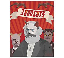 3 red cats Photographic Print