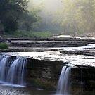 Lower Falls  by Leann  Rardin
