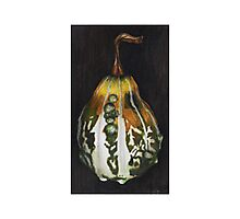 Gourd Photographic Print