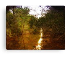 Beautiful Canal Canvas Print