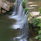 Upper Falls by Leann  Rardin