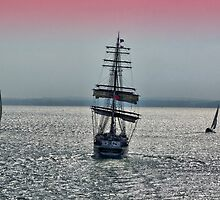 Pirates On The Solent by Colin  Williams Photography