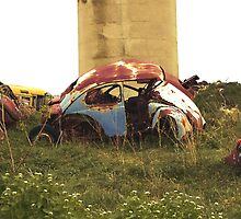Automobile Graveyard No 13 by Barry W  King