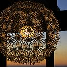 Modern Chandelier by Denice Breaux