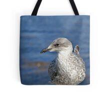 A Seagull's Life Tote Bag