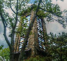 Ryecliff LookOut Tower on Ramapo Mountain by Jane Neill-Hancock