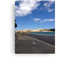 North Island NZ - Sand Dune Canvas Print