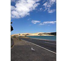 North Island NZ - Sand Dune Photographic Print