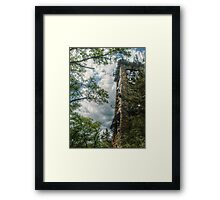 Side view of Ryecliff Lookout Tower Framed Print