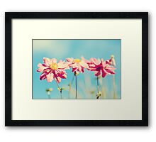 Sunlit Anemone Flowers with Cross Processed Effect Framed Print