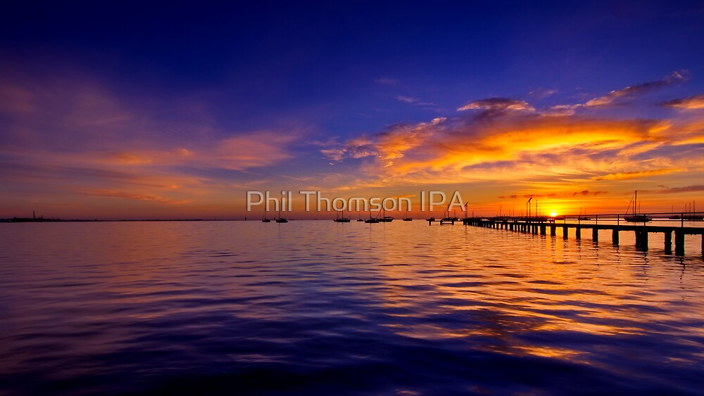 """""""Griffin's Dawn"""" by Phil Thomson IPA"""