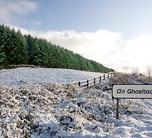 an ghaeltacht sign in irish snow covered scene by morrbyte