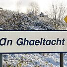 an ghaeltacht sign in snow scene by morrbyte
