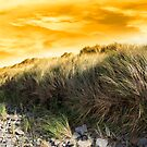 dramatic sunset on rocky beal beach by morrbyte