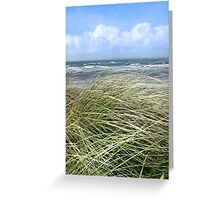 Kerry dune grass Greeting Card