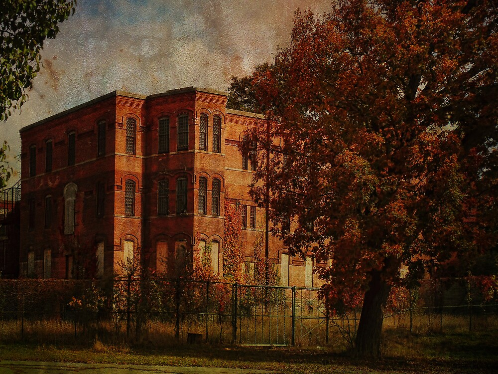 Homeopathic Asylum  by PineSinger