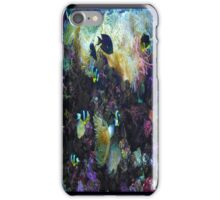Colorful Fish iPhone Case/Skin