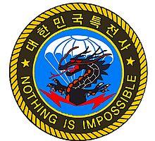 5th Special Forces Brigade (Airborne) BLACK DRAGON by boogeyman