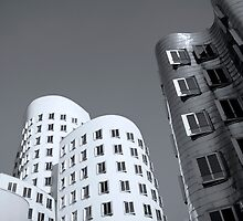 Gehry, Black & White by Oliver Koch