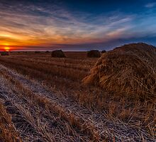 Saskatchewan Sunrise 4277_13 by Ian McGregor