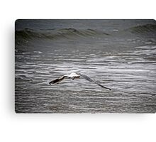 Into The Wide Grey/Blue Yonder Canvas Print