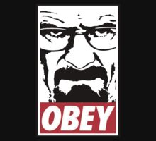 Obey Heisenberg by powerlee