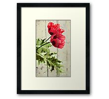 The things we remember Framed Print