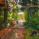 Domain de La Rochette - Western Gate by 242Digital