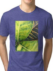 Foliage Tri-blend T-Shirt