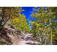 Back Country Road Take Me Home Colorado Photographic Print