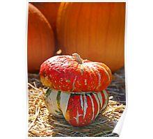 Turban Pumpkin Poster