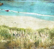 Beach Serenity by Susan Werby