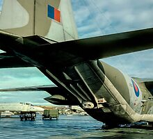 Lockheed Hercules C.1K XV213 detail by Colin Smedley