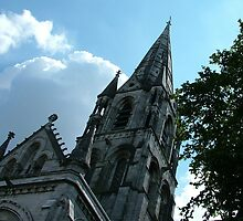 St Fin Barre's Cathedral by Adrian McGlynn