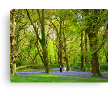 Never too old - to play amongst bluebells! Canvas Print