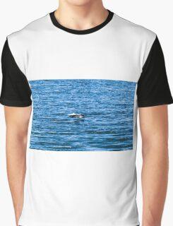 Pelican  in Flight Graphic T-Shirt
