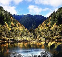 Fall at Umpqua River by Doty