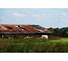 Hay Barn Photographic Print