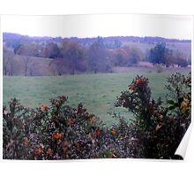 Autumn Leaves on Asters Poster