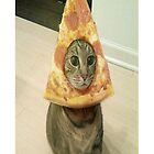 pizza cat by ayymaria